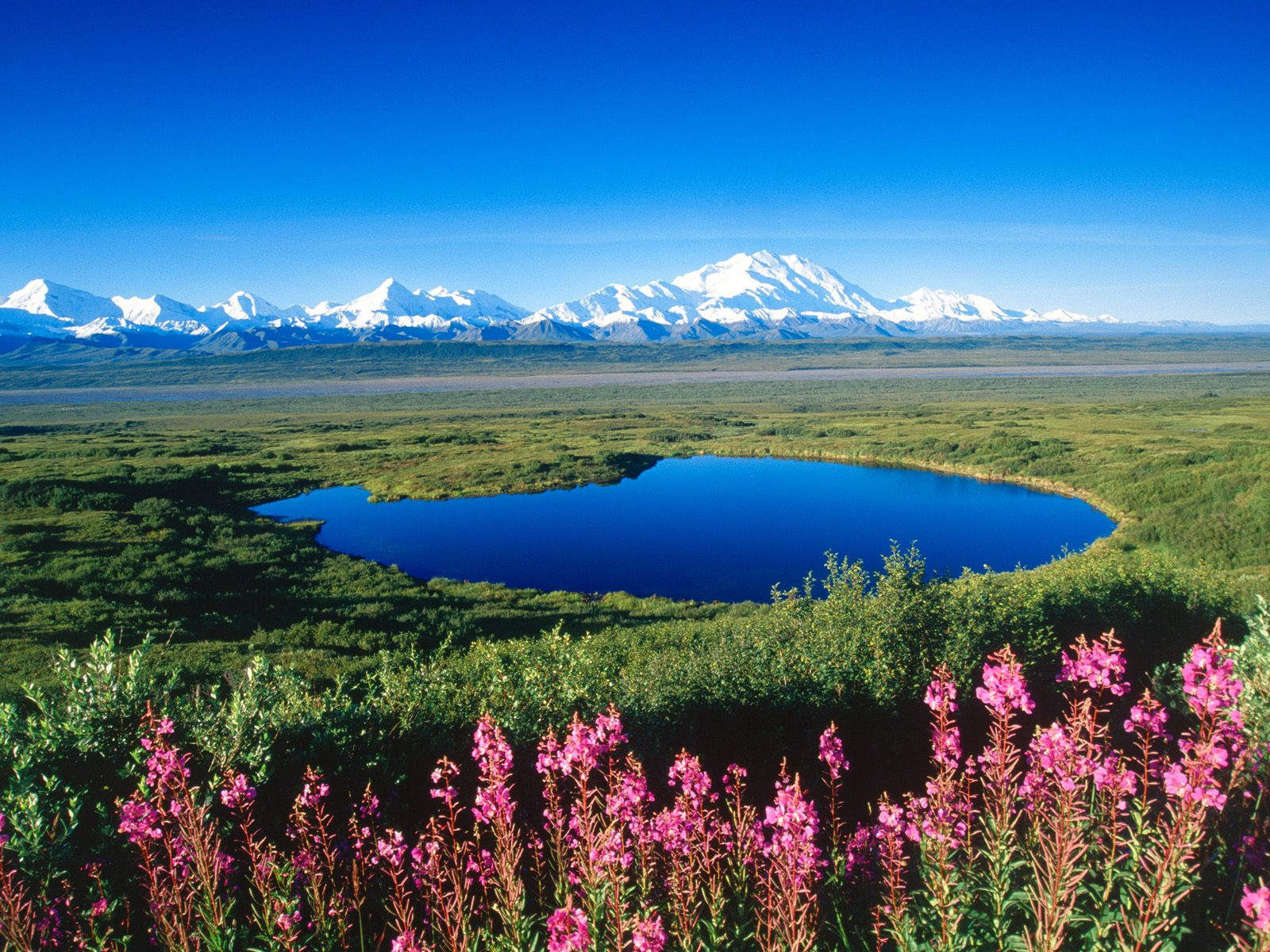 denali national park single hispanic girls Born in the spirit of teddy roosevelt and charles sheldon, denali national park and preserve's 6 million acres continue to awe and inspire -- and deserve protection.