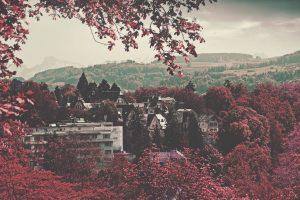 Switzerland In Autumn