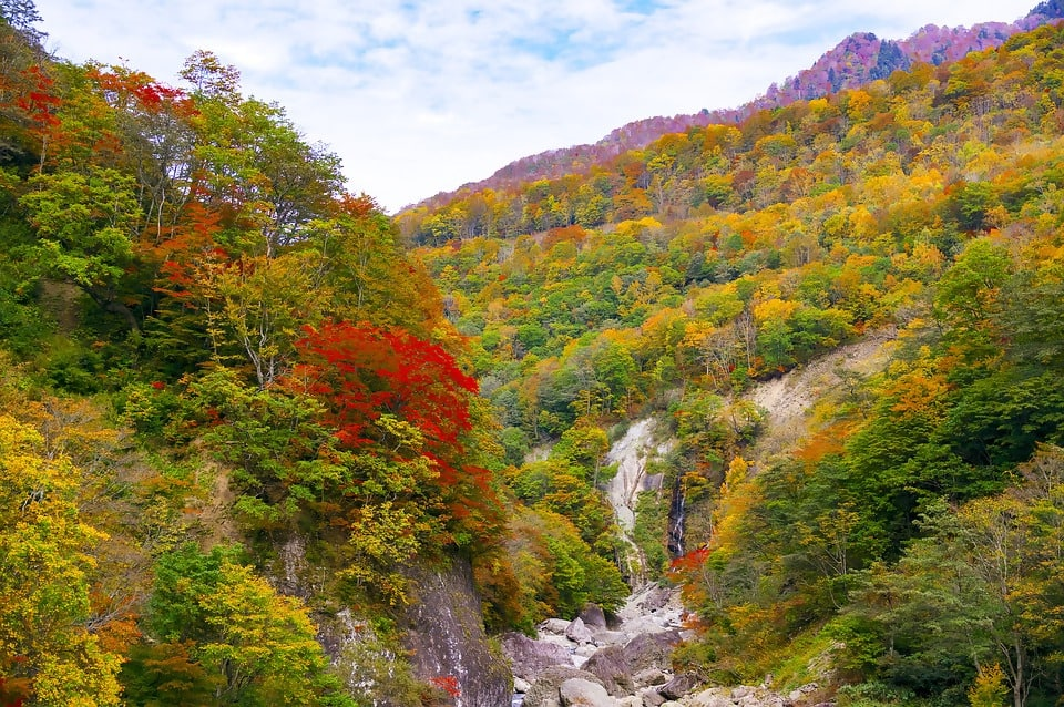 Japan's Autumn Foliage May Arrive Later Than Usual